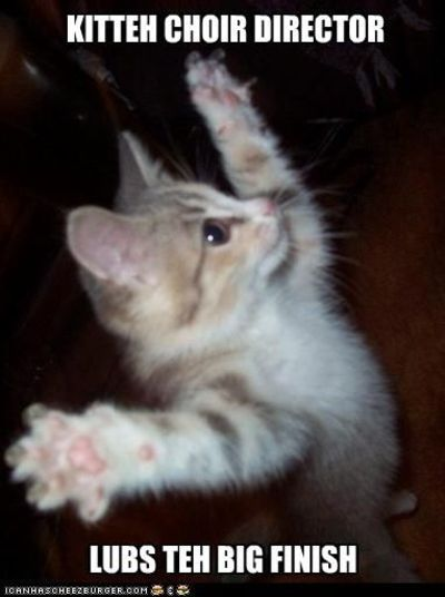 funny-pictures-kitten-is-choir-director