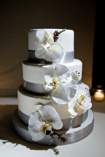 beautiful winter wedding cake with silver ribbon and white o ...