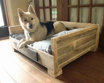 Pallet furniture how to make a wood pallet dog bed hgtv for Beds made out of pallets
