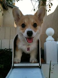 Special delivery.... of cuteness!