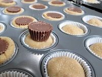 Peanut butter cup sugar cookie cupcakes. yum!