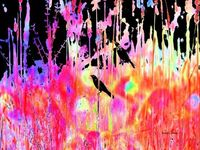 Bold Colorful Print Grackle Abstract Pink Art 8 x 10 Giclee. $20.00, via Etsy.
