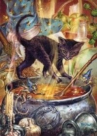 cat & cauldron