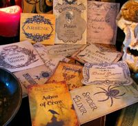 12 Halloween Potion Bottle Labels One of a Kind Designs