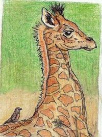 aceo on ebay