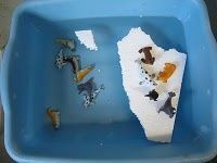 add Styrofoam pieces and polar animals to water play
