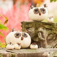 These owls are a hoot. Dress white pumpkins with an assortment of seeds and nuts to create the noses and eyes. Add feathers for the ears. Use mini pumpkins to make a parliament of cute baby owls.