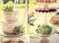 #succulent #wedding #cake by Passionflower
