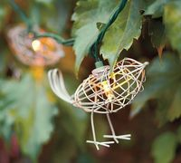 outdoor bird lights