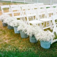 babys breath or your wedding In planters
