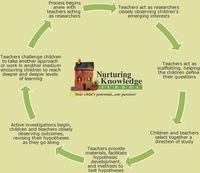 Emergent curriculum/ project approach